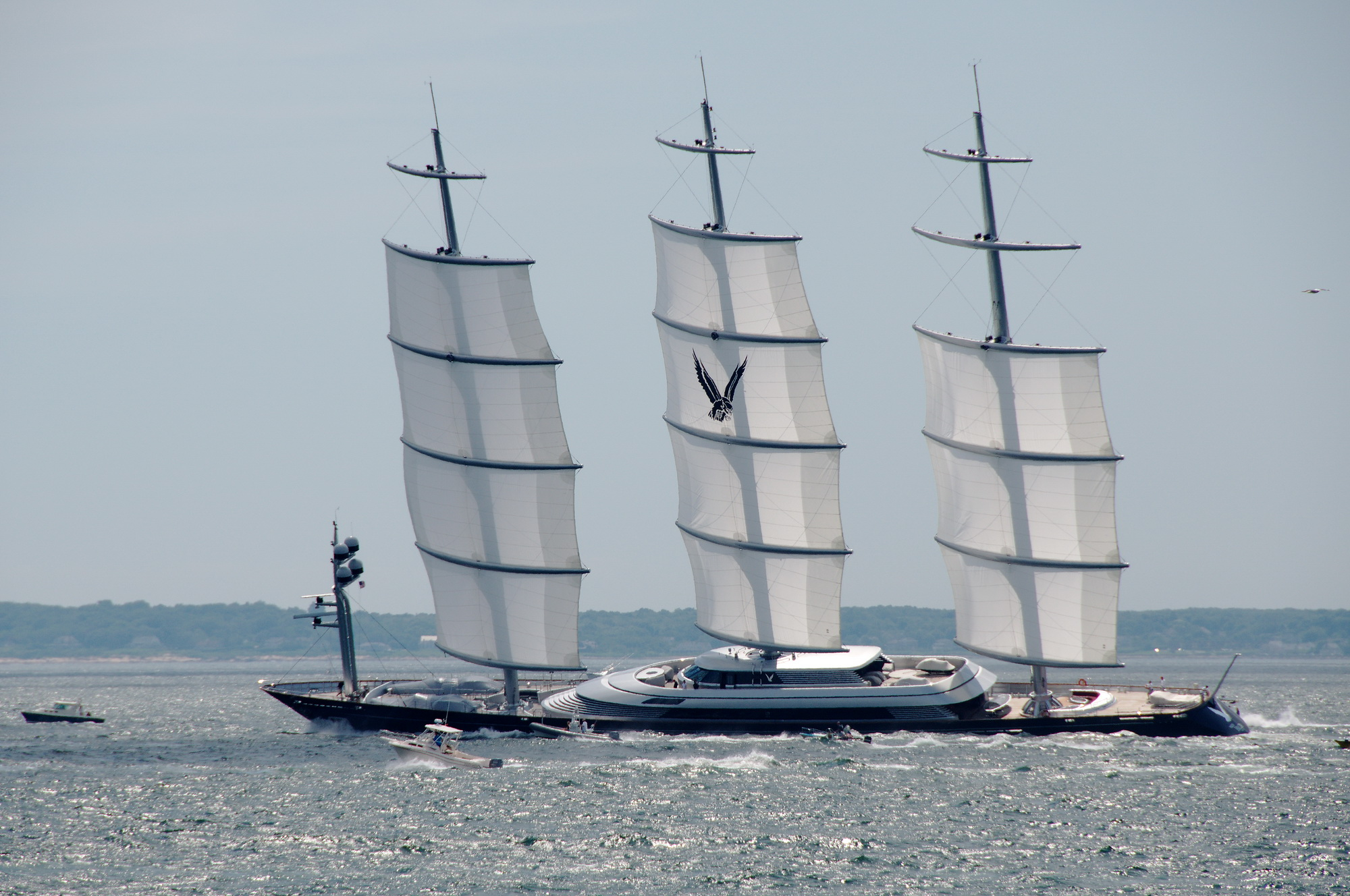 Any Pics Of Dynarig Or Maltese Falcon Stowing Its Sails Inside Mast Boat Design Net