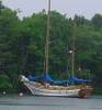 311unidentified_schooner_at_Gold_River_Marina.jpg
