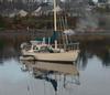 151carlsboat-comox3.jpg