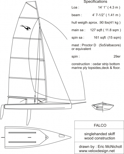 29er similar to Falco.jpg