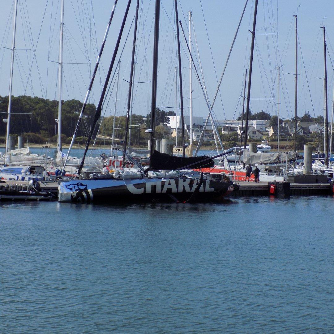Charal acrosss marina.JPG