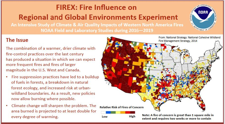 Forest fires impact.JPG
