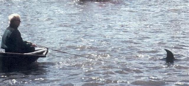 overboard motor 3.jpg