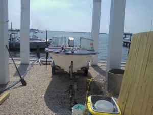 1978 Johnson Seahorse 70HP Qestions? | Boat Design Net