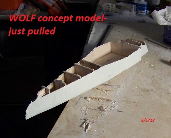 WOLF 14 concept model 6-1-18 001.JPG