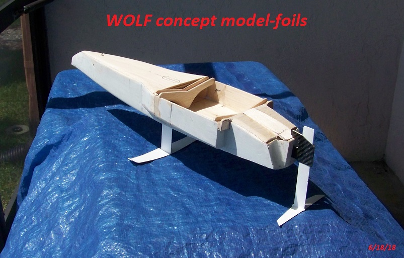 WOLF 14 concept model 6-18-18 003.JPG
