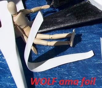 WOLF 14 concept model 9-18-18 008.JPG