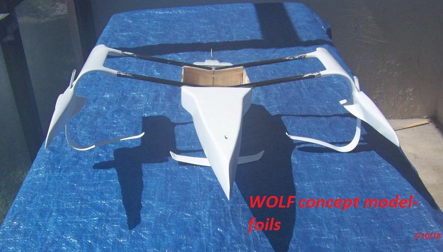 WOLF 14 concept model-foils-7-10-18 002.JPG