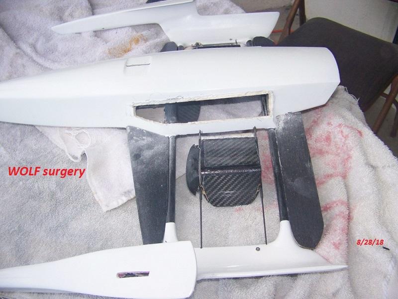 WOLF 14 concept-surgery 8-28-18 003.JPG