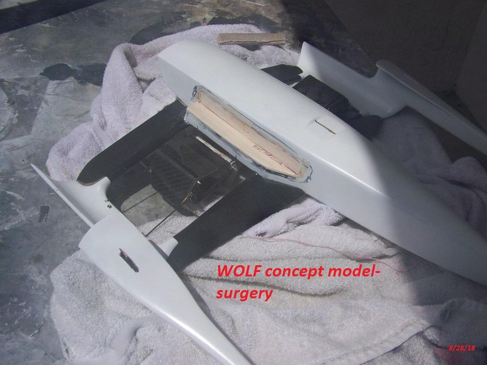 WOLF 14 concept surgery-8-28-18 003.JPG