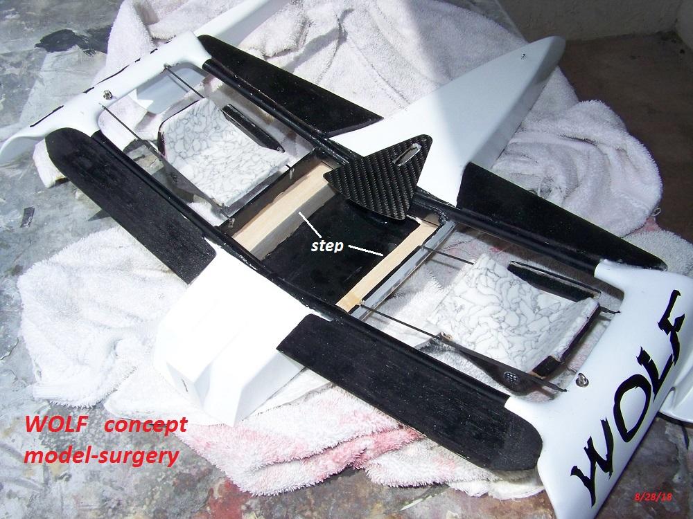 WOLF 14 concept surgery-8-28-18 005.JPG