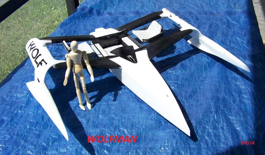 WOLF 14 concept-wolfman 9-1-18 015.JPG