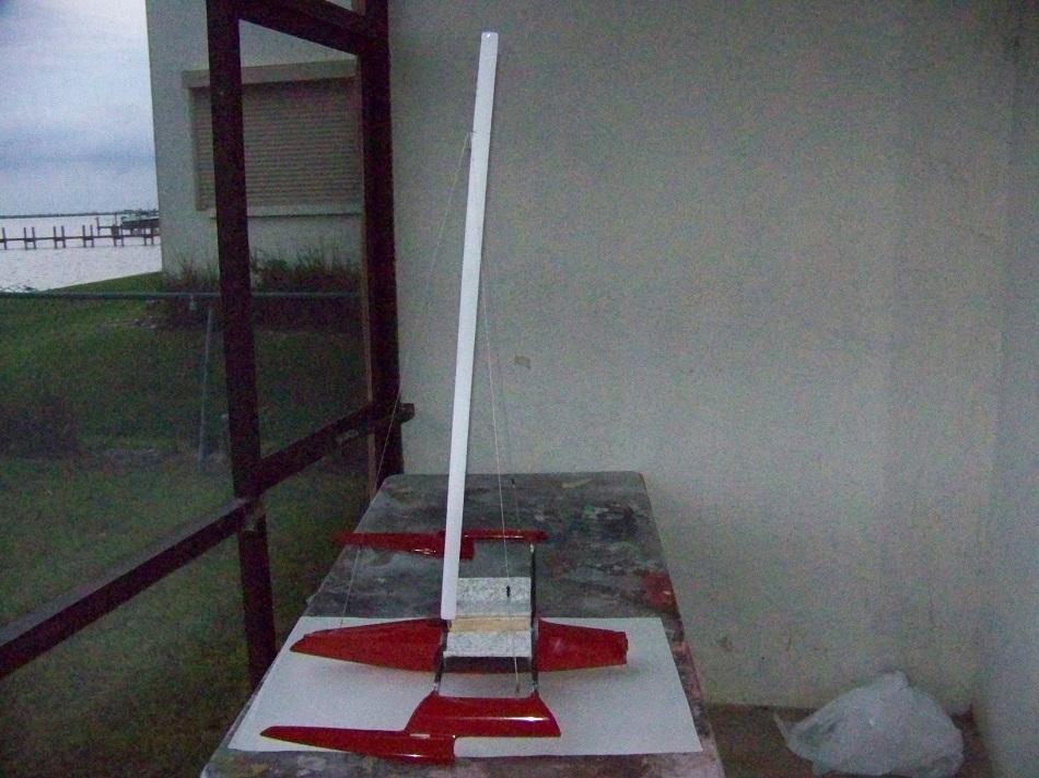 WOLF ----mast                      11-23-17 002.JPG