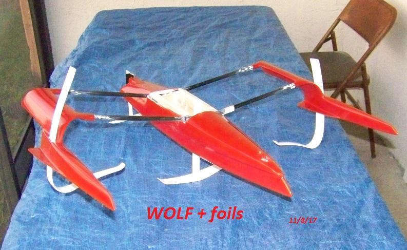WOLF  plus foils  11-8-17 003.JPG